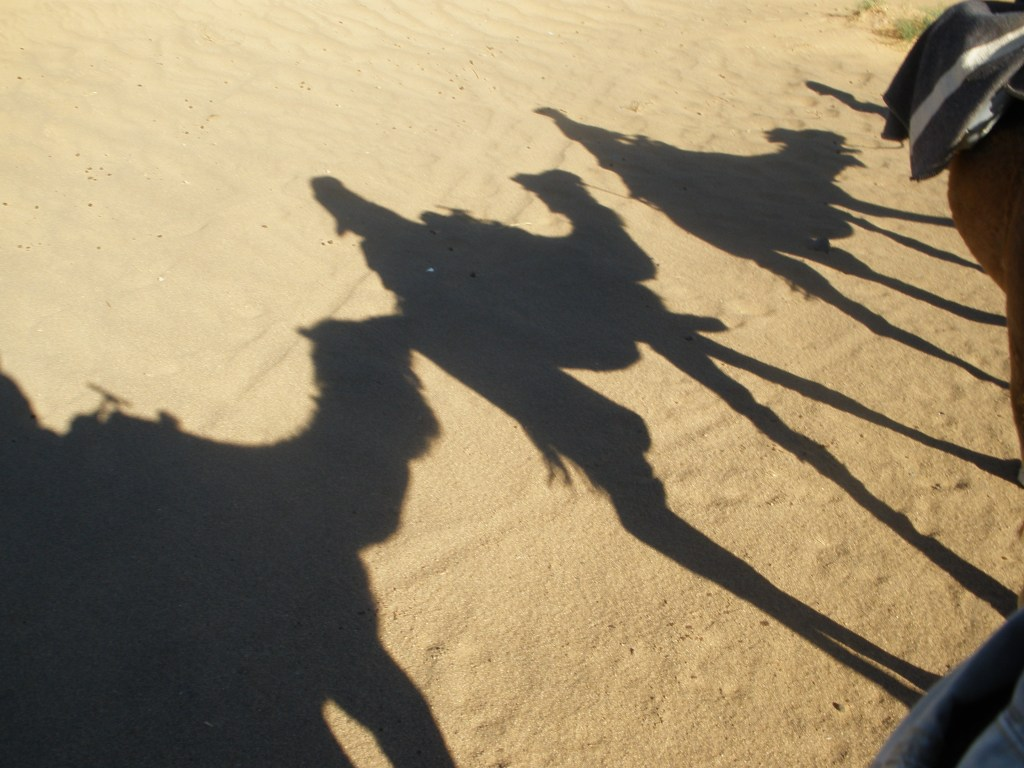 Camel train, Merzouga