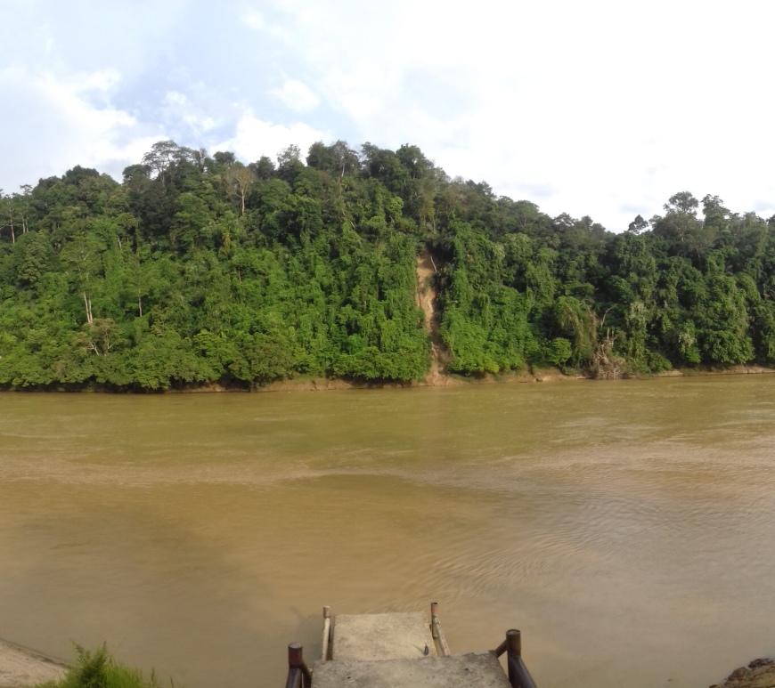 river, borneo