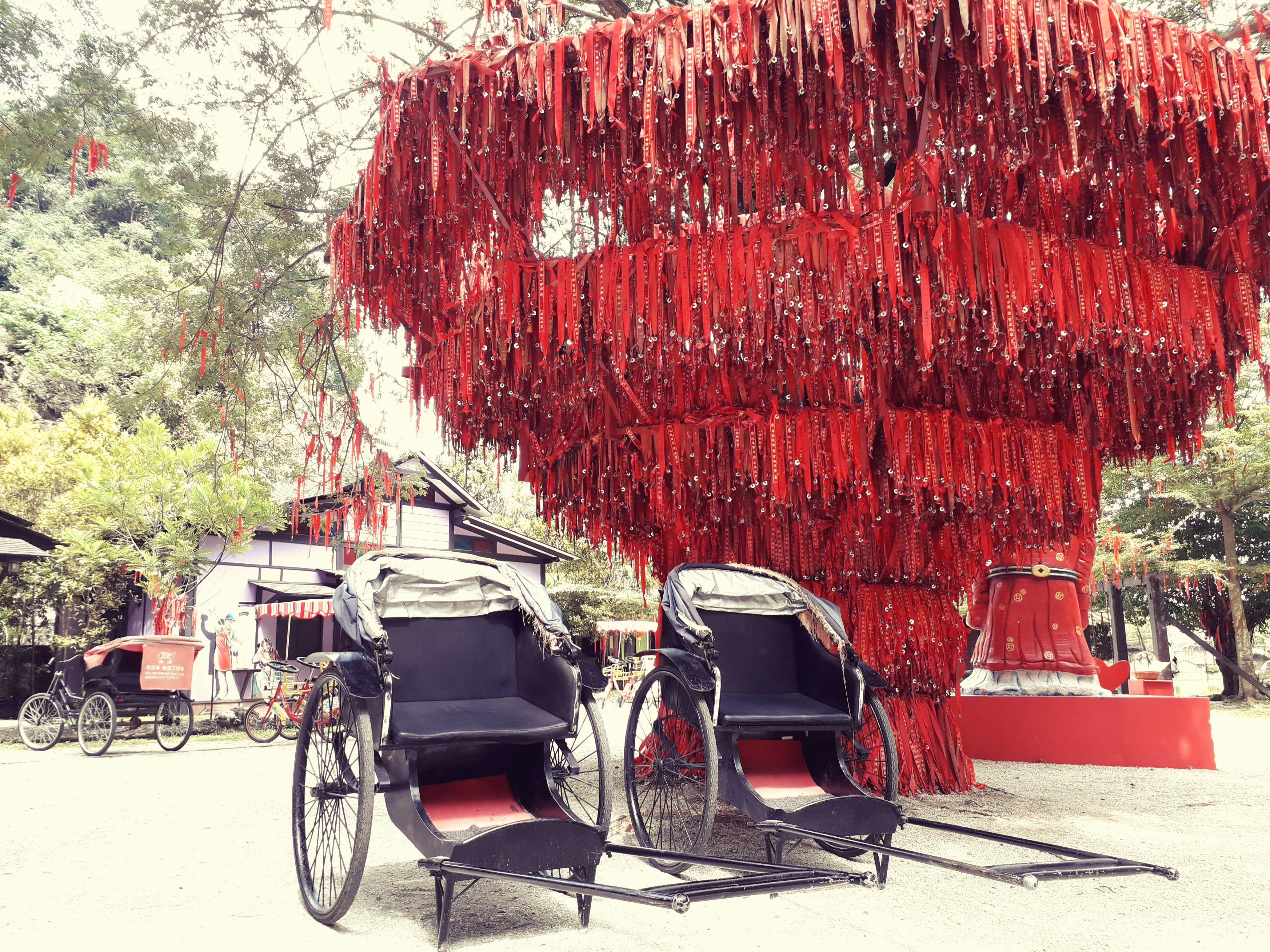 banyan wish tree and rickshaw, qing xin ling, malaysia